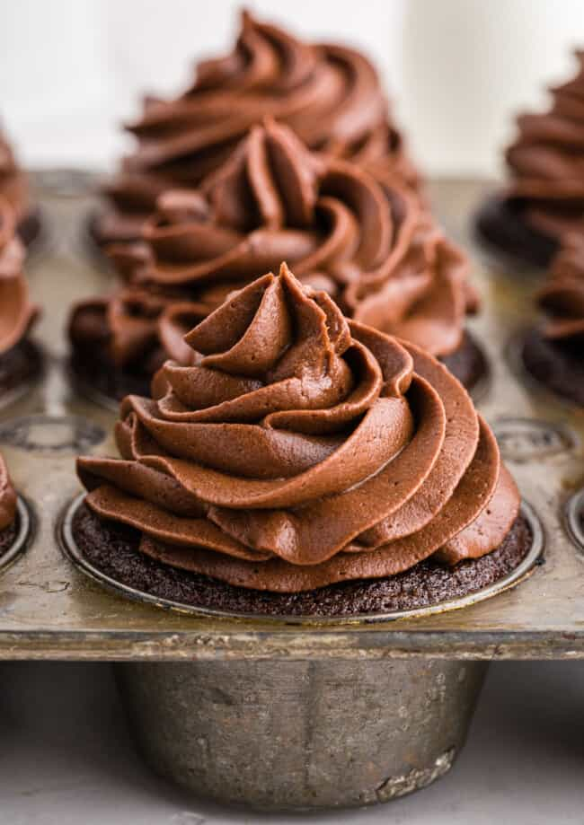 chocolate buttercream frosting on chocolate cupcakes