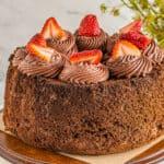 featured chocolate angel food cake