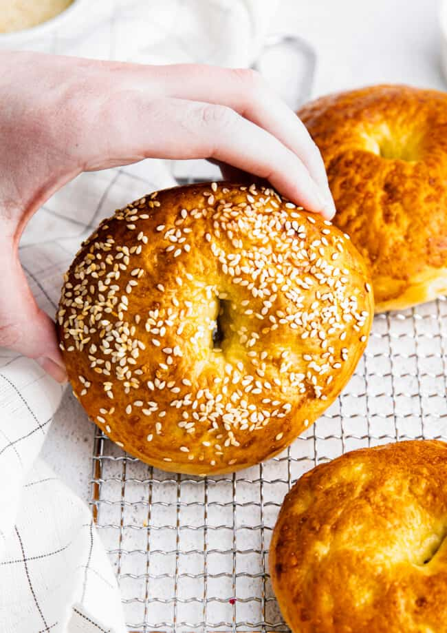 holding up homemade bagel with sesame seeds