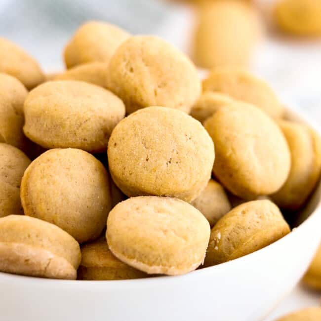 white bowl of homemade peanut butter dog treat cookies