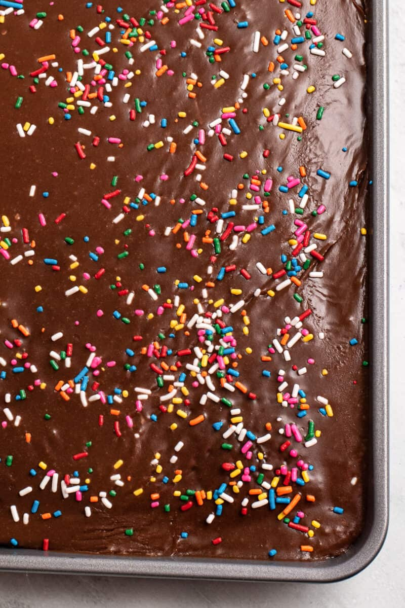 texas sheet cake in sheet pan garnished with sprinkles