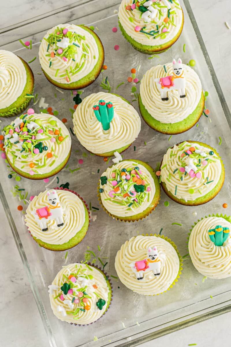 overhead cinco de mayo pinata cupcakes