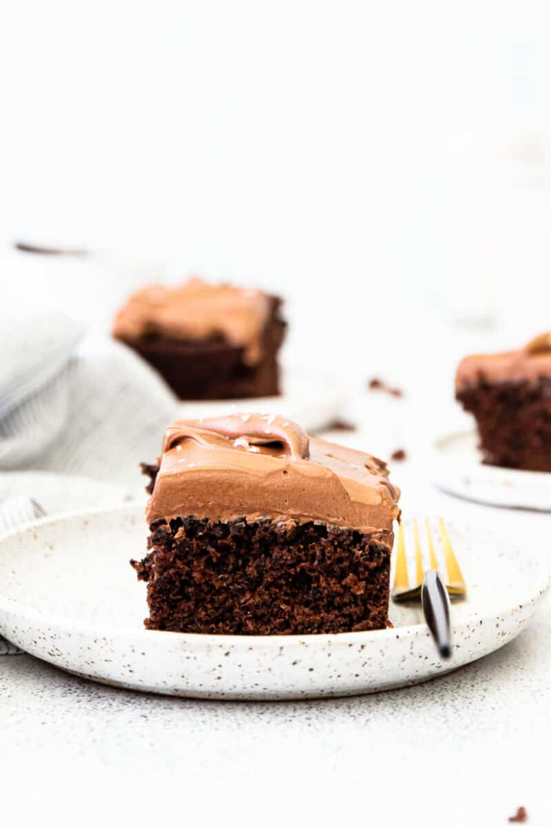 slice of double chocolate cake on white plate