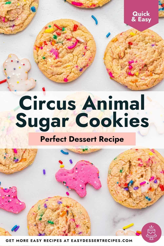 circus animal sugar cookies pinterest