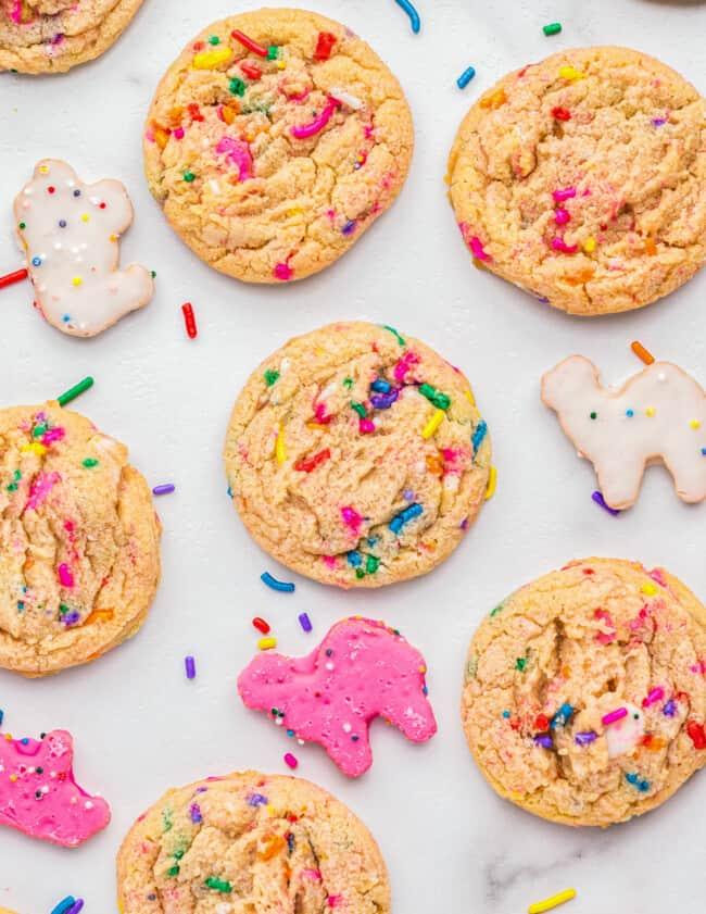 circus animal sugar cookies on white table