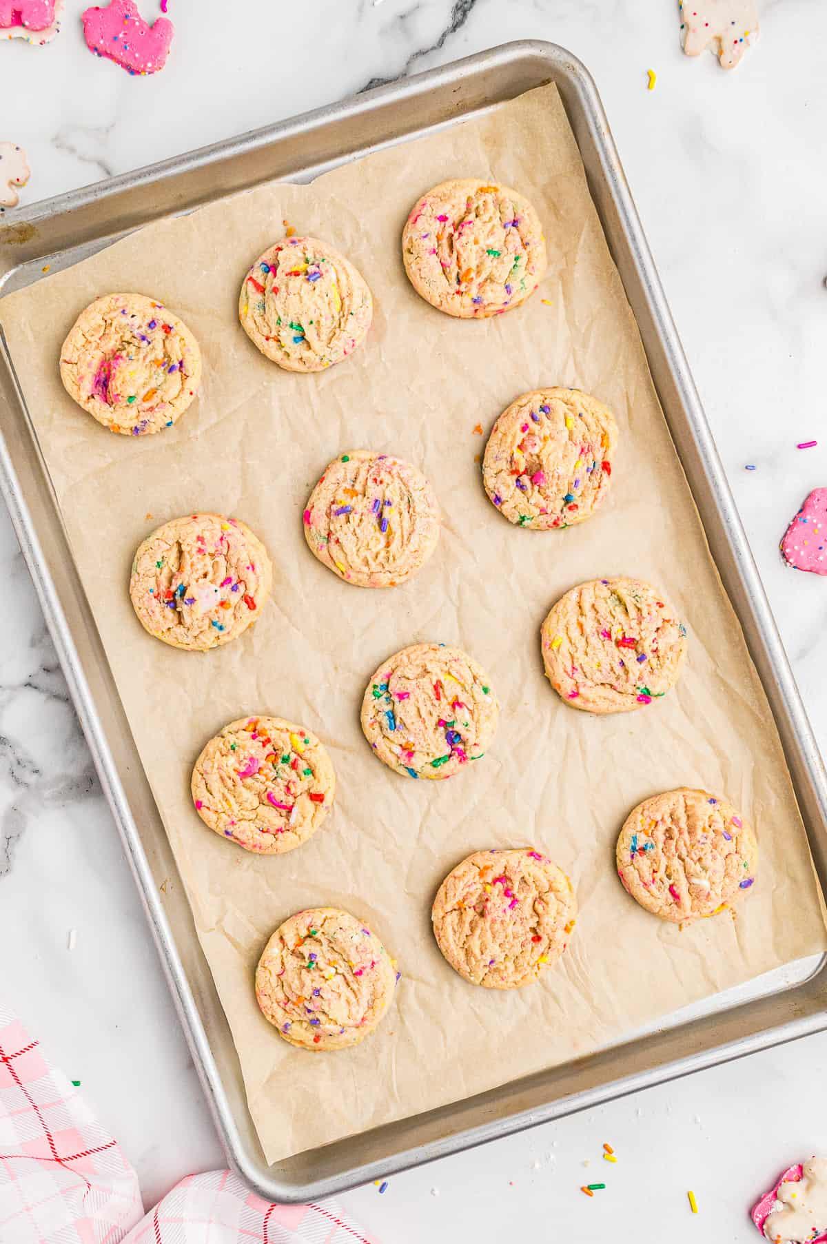 circus animal sugar cookies on baking sheet