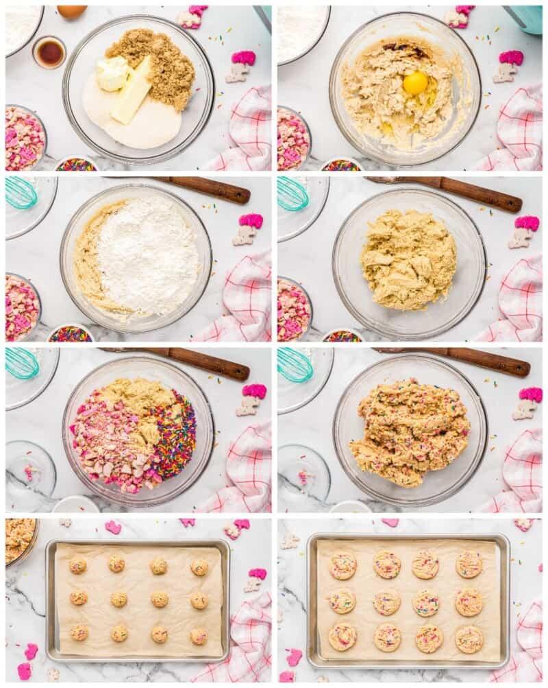 step by step photos for how to make circus animal sugar cookies